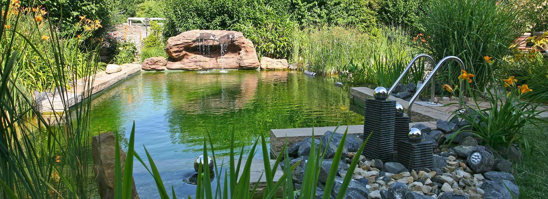 schwimmteich schwimmteichbau von falko werner